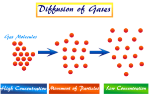 Graham's Law definition, application and formula to calculate rate of diffusion or effusion of gases