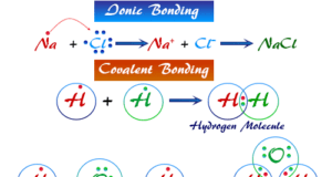 Different types of bonding (ionic, covalent, metallic bonds) in the common chemical compound