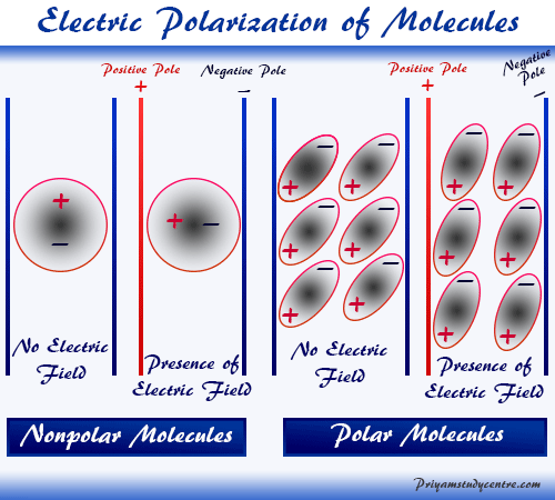 Electric polarization definition and example of polarized molecules in chemistry