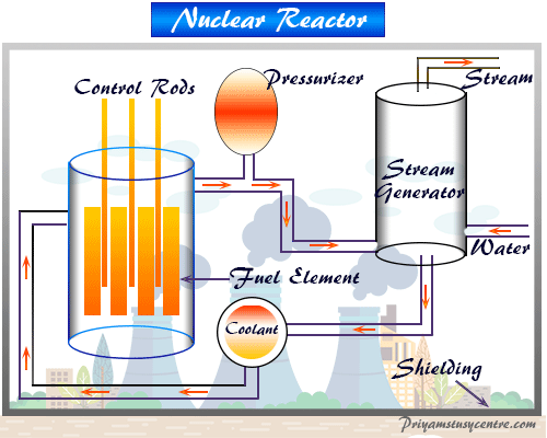 Reactor of nuclear power plant for electrical energy generation sources