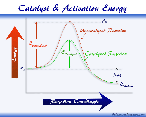 Chemical catalyst or catalysts effect on activation energy or rate of catalysis reaction in chemistry or biology