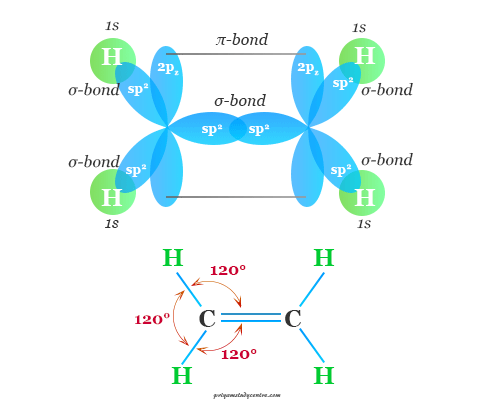 Example of double covalent bond in ethylene