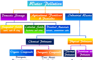 Water Pollution causes and effects, the release of substances go into surface of groundwater or into the rivers, lakes, streams, oceans, water gets polluted