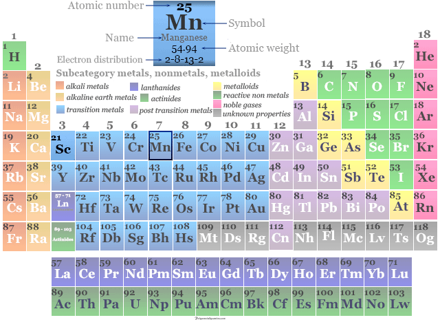 Position of transition metal or chemical element Manganese in the periodic table