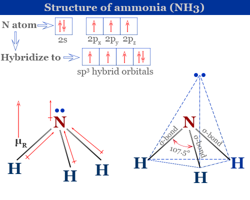 Properties and structure of ammonia (NH3) molecule