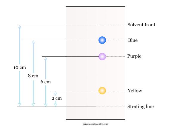 Chromatogram in paper chromatography