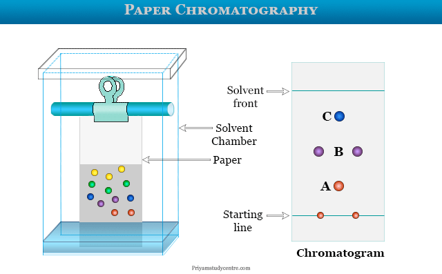 Paper chromatography experiments or principle and procedure uses in labs